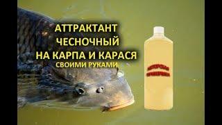 Чесночный аттрактант для рыбалки своими руками
