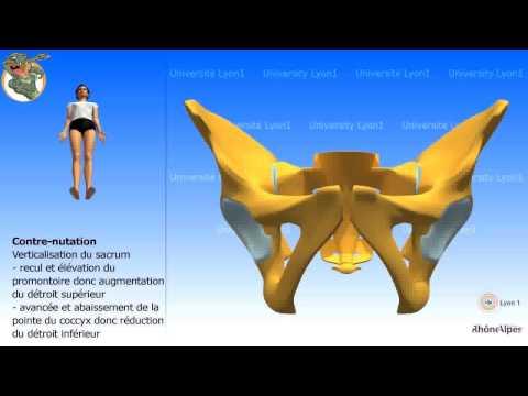 Come osteocondrosi della cervicale e toracico