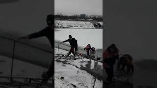 Спасение собаки из водоема