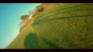FPV Freestyle Tree Ripping