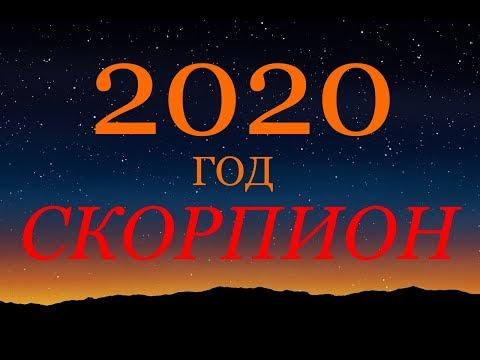 СКОРПИОН. ГОРОСКОП на 2020 год. ГЛАВНЫЕ СОБЫТИЯ ГОДА.