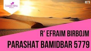 Parashá Bamidbar