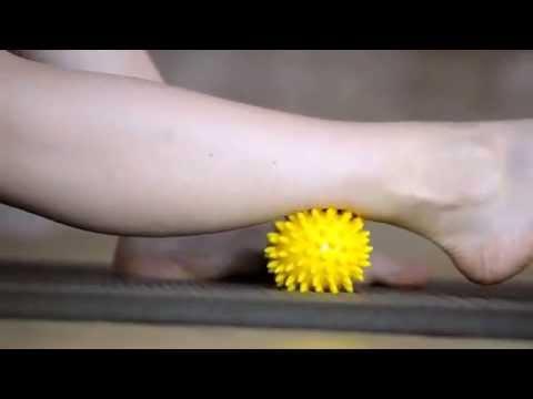 Quante vene su una gamba