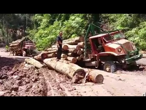 V10 Timber Truck | Hard Core