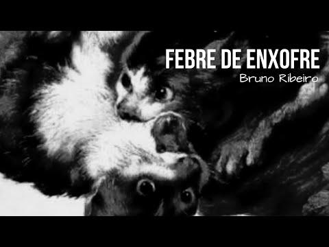 (SORTEIO) Febre de Enxofre, de Bruno Ribeiro