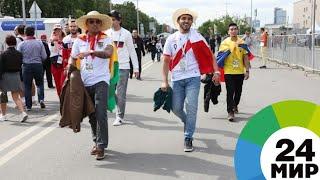 «Медведей на улицах нет»: болельщики отказываются от стереотипов о России - МИР 24