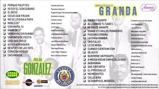 """Celio Gonzalez / Bienvenido Granda  Sonora Matancera — """"Exitos de Oro"""" (Vol. 3) — ©2019"""