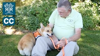 Service & Companion Animal Owners - Know Your Rights!