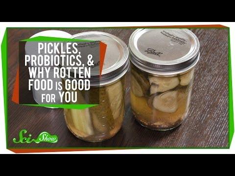 Le traitement du microorganisme végétal inguinal et le microorganisme végétal du pied