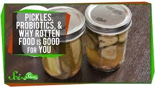 Pickles, Probiotics, and Why Rotten Food Is Good For You - Video Youtube