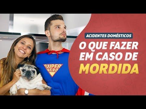 Imagem ilustrativa do vídeo: O que fazer em caso de MORDIDA I Acidentes Domésticos #03