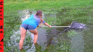 CATCHING FISH TRAPPED in ROAD-SIDE RAIN DITCHES!