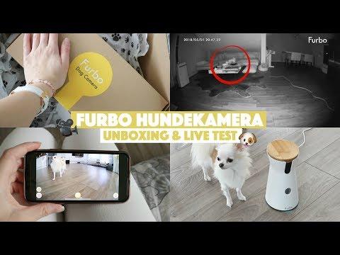 FURBO HUNDEKAMERA 🐶 | LIVE CAM FÜR HUNDE | Überwachungs-Kamera für Vierbeiner
