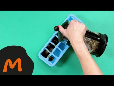 Eiswürfelform unterschiedlich eingesetzt – Migusto Kitchen Hacks
