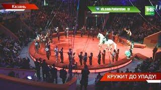 Казанский цирк открыл свои двери после годичной реконструкции: на что потратили почти миллиард руб.?