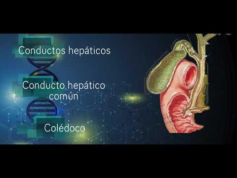 Lo que es necesario tomar un medicamento para la hipertensión