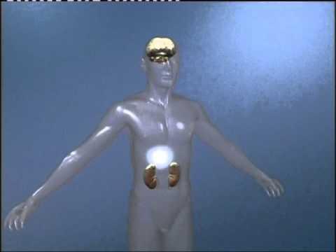 Die Abtragung der Pigmentflecke vom Laser tscheboksary