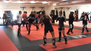 topfighter/elite mma kickbox training