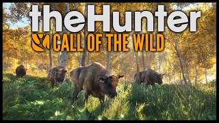The Hunter Call of the Wild - Bison, Fox, Deer Hunting & Boar - The Hunter Call Of The Wild Gameplay