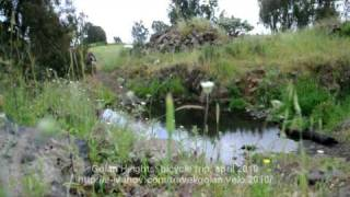 preview picture of video 'Bicycle trip, Israel, Golan Heights, april 2010, part 2'