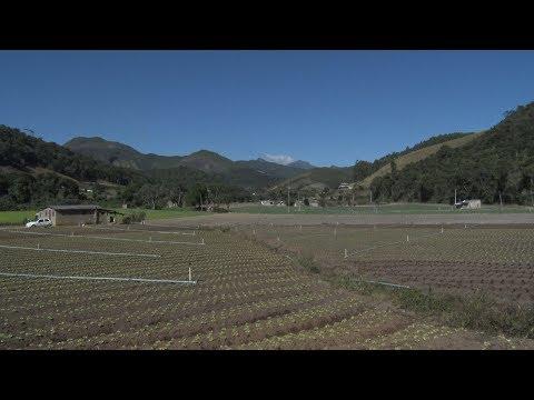 'PL do Veneno', que visa alterar a lei dos agrotóxicos, divide opiniões