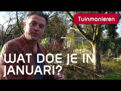 Wat doe je in de tuin in januari? - Winter