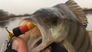 Рыбалка на москва-реке в декабре