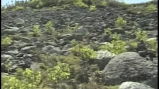 Mt. Abraham Hike