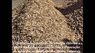 De Biomassa a energia eléctrica