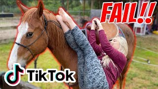 Recreating EQUESTRIAN TIK TOKS!