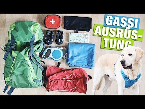 GASSI HUNDE HAUL   Outdoor mit Hund   BACKPACK AMAZON deutsch