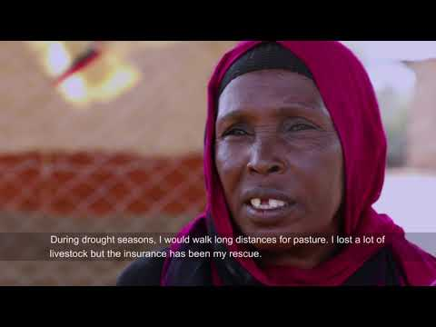 Documentary - Climate Risk Insurance in Kenya