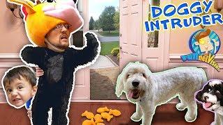 STRANGER DOG TRESPASSES in our HOUSE! (FUNnel Fam Puppy Vision Vlog)