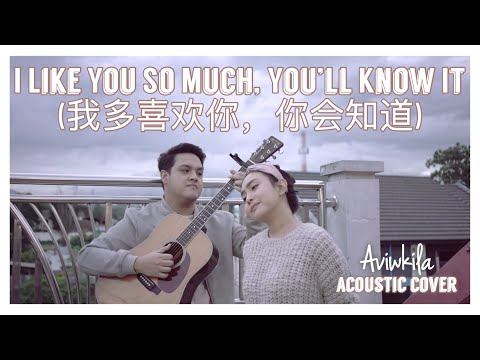 I Like You So Much, You'll Know It (我多喜欢你,你会知道) - A Love So Beautiful OST (English Cover)