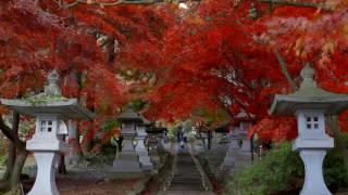 長野市観光プロモーシション映像