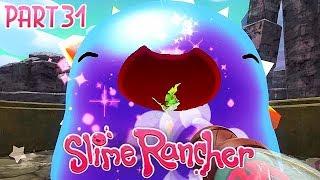 Slime Rancher Schatz Kapseln Karte.ᐈ Die Tresore Der Goldene Gordo 13 Finale Slime
