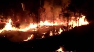 Video Preternatural - SunFire (lyric video)