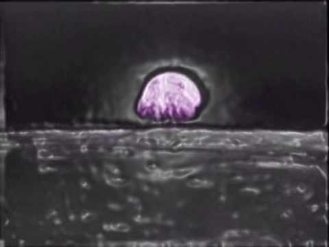 Colour Haze - Moon (w/NASA footage)