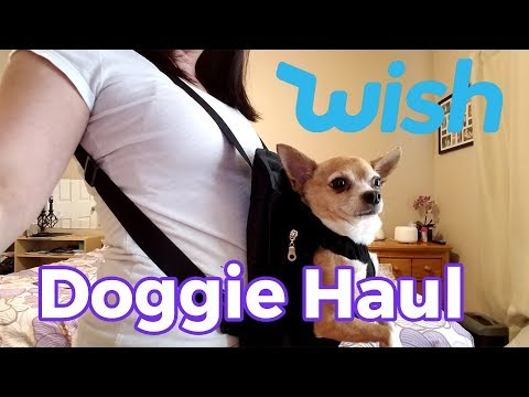 Testing Out A Doggie WISH Haul