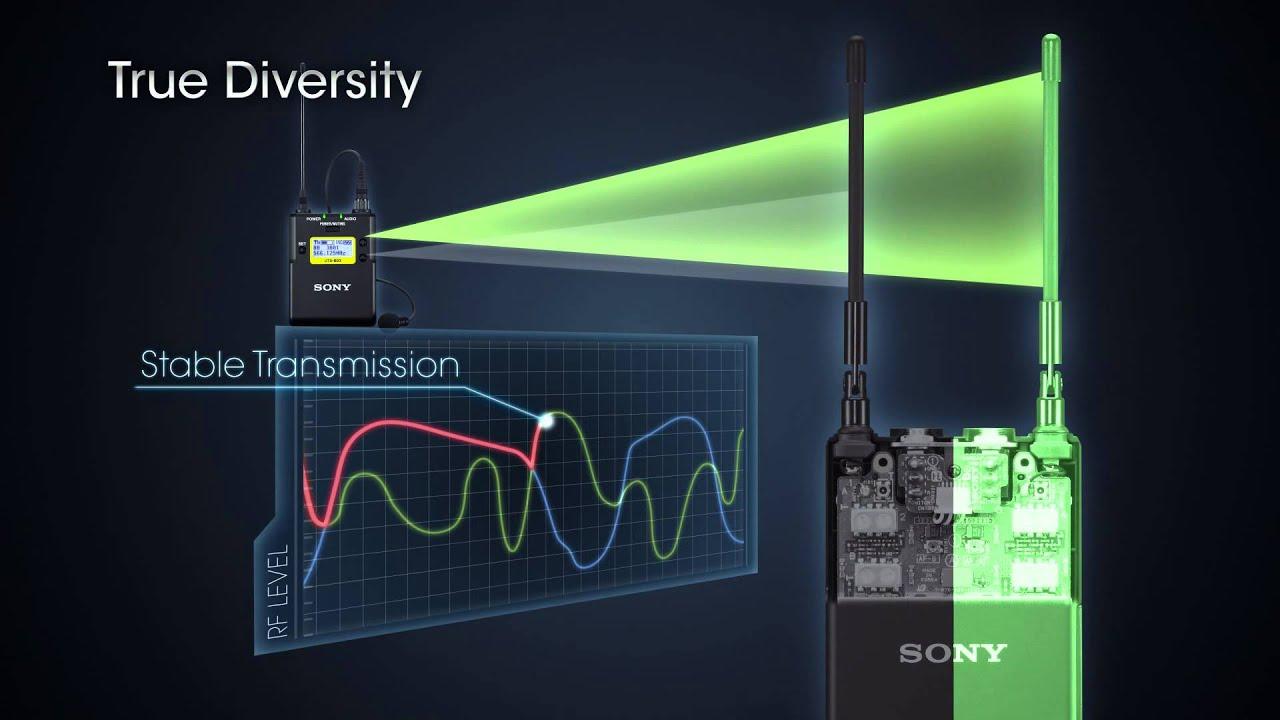 Buy Sony Uwp D11 K33 Radio Channel 33 Wireless Digital Audio Range Fm Transmitter Circuit Diagram On Headphone Wiring At A Glance Broadcast