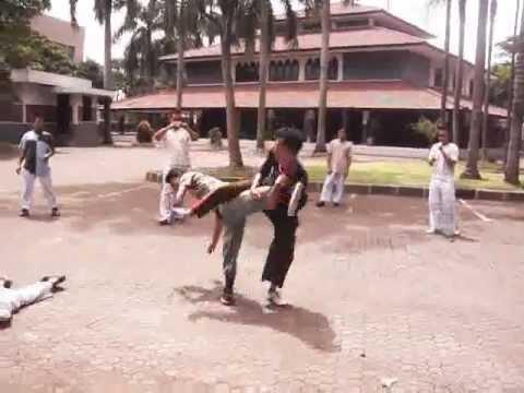 Kung Fu Wing Chun Naga Putih (白龍功夫詠春) | KASKUS