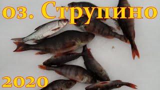 Рыбалка в петрокрепости 31 июля 2020г
