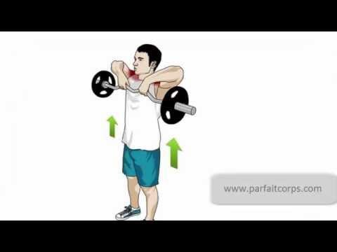 Comme sappelle longuent pour les muscles