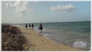 Horseback Riding Tour Punta Cana  | Amstar Dominican