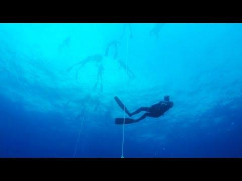 Breathe: A short documentary on freediving