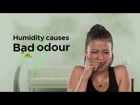 Koryo Dehumidfier- Odour