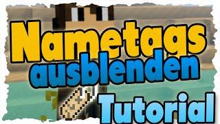 Minecraft Plugin Unsichtbarer Name über Kopf Bukkit Minecraft - Minecraft farbige namen andern