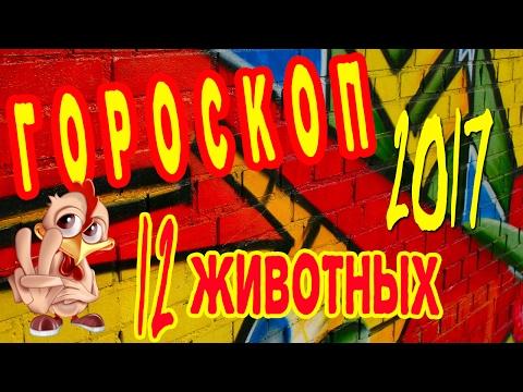 Гороскоп на сегодня на майл.ру водолей