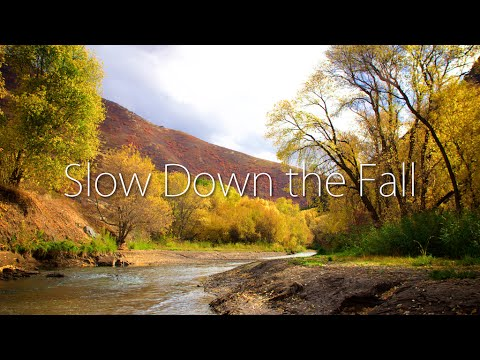 Slow Down the Fall