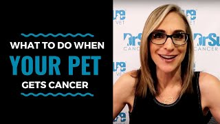 What To Do When Your Pet Gets Cancer: VLOG 78